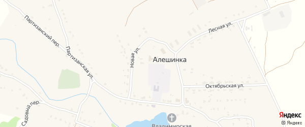 Садовая улица на карте села Алешинки с номерами домов