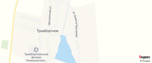 Улица Бориса Прусакова на карте Троебортного села с номерами домов