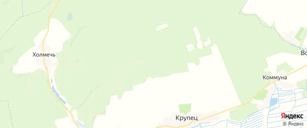 Карта территории Крупецкого сельского поселения Брянской области с районами, улицами и номерами домов