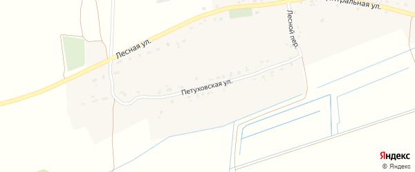Петуховская улица на карте деревни Крупца с номерами домов