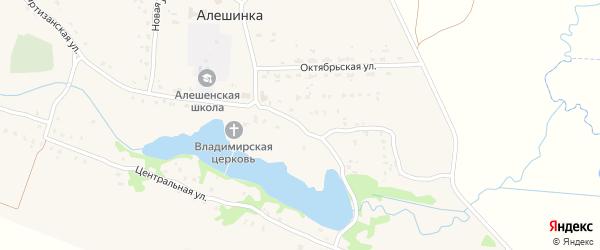 Заречная улица на карте села Алешинки с номерами домов