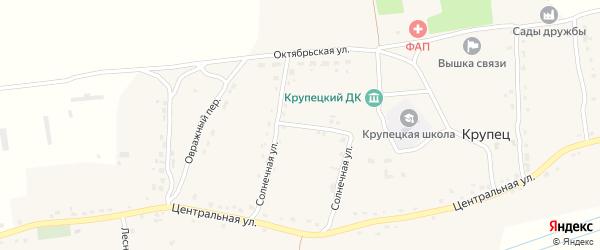 Солнечная улица на карте деревни Крупца с номерами домов