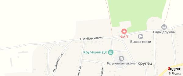 Октябрьская улица на карте деревни Крупца с номерами домов