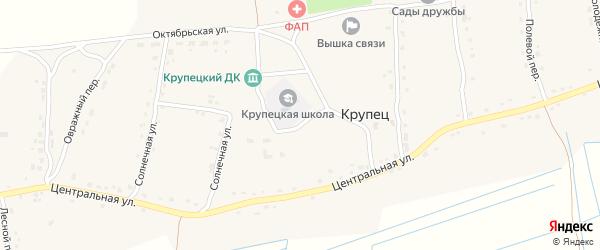 Школьный переулок на карте деревни Крупца с номерами домов