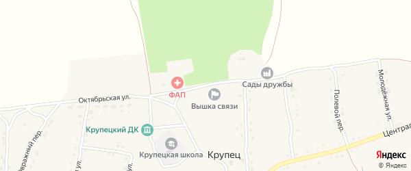 Садовый переулок на карте деревни Крупца с номерами домов