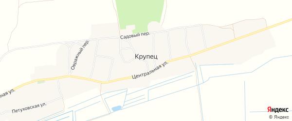 Карта деревни Крупца в Брянской области с улицами и номерами домов