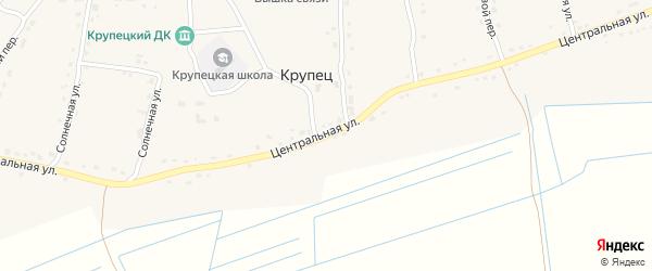 Центральная улица на карте деревни Крупца с номерами домов