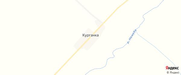Карта деревни Курганки в Брянской области с улицами и номерами домов