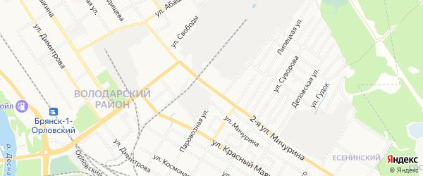 Территория СО им. Мичурина на карте Брянска с номерами домов