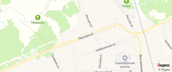Лесная улица на карте поселка Синезерки с номерами домов