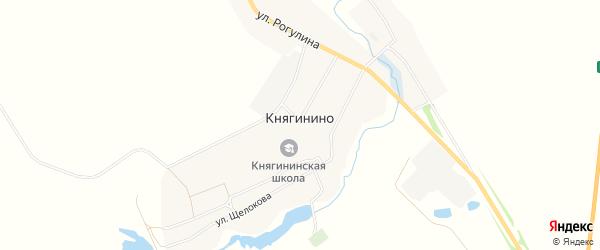 Карта села Княгинино в Брянской области с улицами и номерами домов
