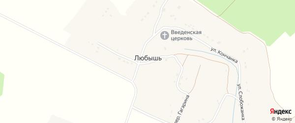Территория сдт Ландыш на карте села Любышь с номерами домов