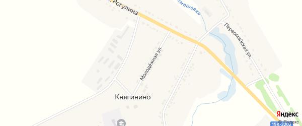 Молодежная улица на карте села Княгинино с номерами домов