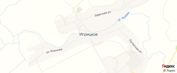 Карта Игрицкого села в Брянской области с улицами и номерами домов