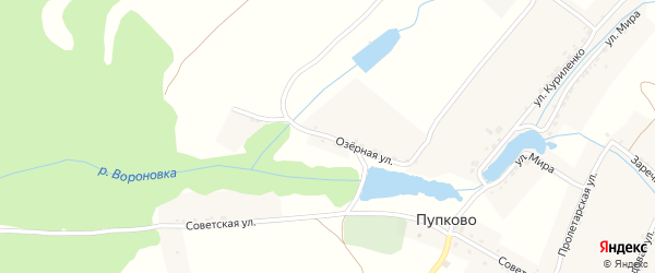 Озерная улица на карте села Пупково с номерами домов