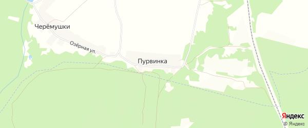 Карта поселка Пурвинки в Брянской области с улицами и номерами домов