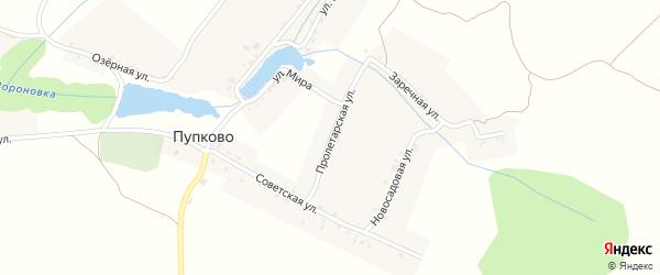 Пролетарская улица на карте села Пупково с номерами домов