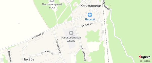 Школьная улица на карте поселка Клюковники с номерами домов