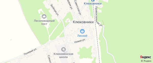 Центральная улица на карте поселка Клюковники с номерами домов