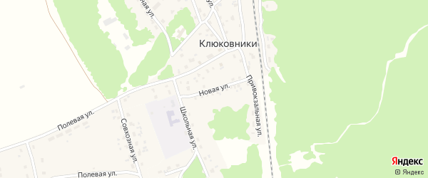 Новая улица на карте поселка Клюковники с номерами домов