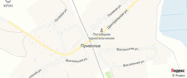 Центральная улица на карте деревни Приволья с номерами домов