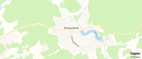 Карта деревни Кольцовки в Брянской области с улицами и номерами домов