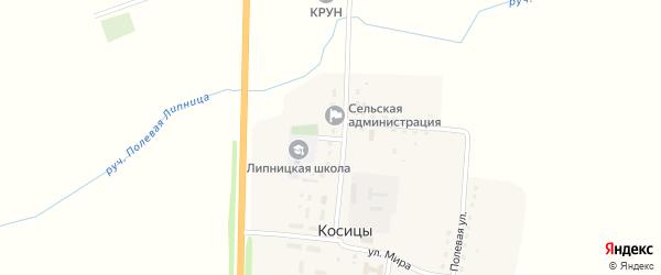 Школьный переулок на карте поселка Косицы с номерами домов