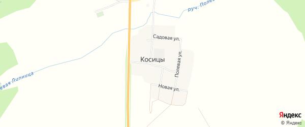 Карта поселка Косицы в Брянской области с улицами и номерами домов