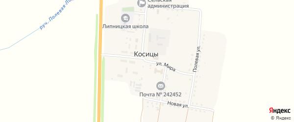 Улица Мира на карте поселка Косицы с номерами домов