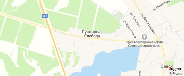 Карта деревни Пушкарной Слободы в Брянской области с улицами и номерами домов