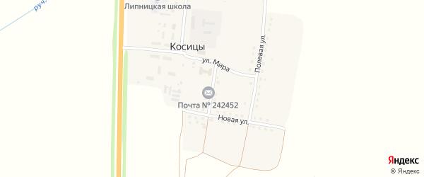 Новый переулок на карте поселка Косицы с номерами домов