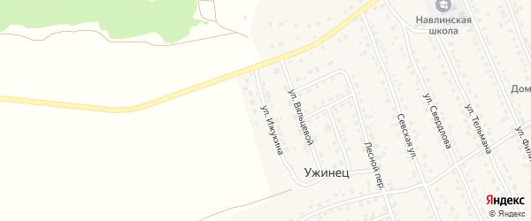 Улица Ижукина на карте поселка Навли с номерами домов