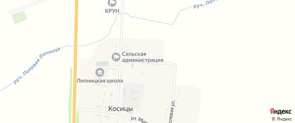 Садовая улица на карте поселка Косицы с номерами домов