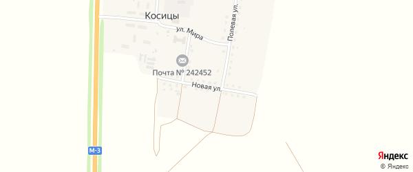 Новая улица на карте поселка Косицы с номерами домов