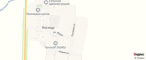 Полевая улица на карте поселка Косицы с номерами домов