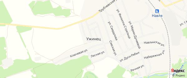 Карта поселка Ужинца в Брянской области с улицами и номерами домов