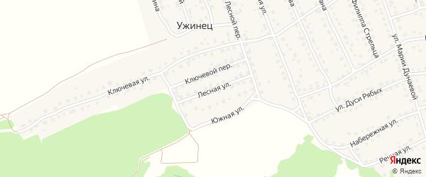 Лесная улица на карте поселка Навли с номерами домов