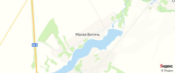 Карта деревни Малой Витичи в Брянской области с улицами и номерами домов