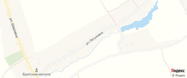 Улица Петуховка на карте Новоямского села с номерами домов