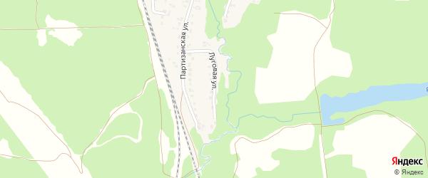 Луговая улица на карте деревни Стеклянной Радицы с номерами домов