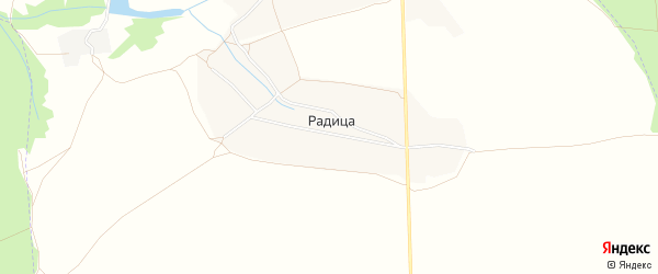 Карта деревни Радицы в Брянской области с улицами и номерами домов