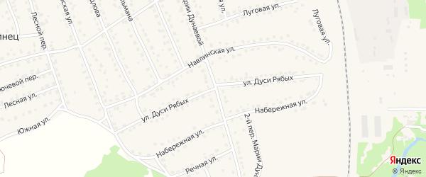 Улица Дуси Рябых на карте поселка Навли с номерами домов