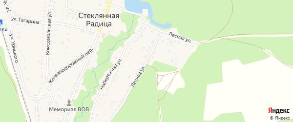 Лесная улица на карте деревни Стеклянной Радицы с номерами домов