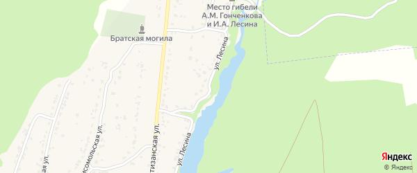 Улица Лесина на карте деревни Стеклянной Радицы с номерами домов