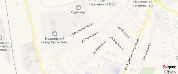Улица Мичурина на карте поселка Навли с номерами домов