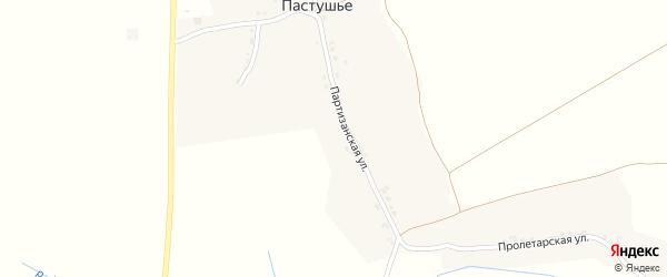 Партизанская улица на карте деревни Пастушьего с номерами домов