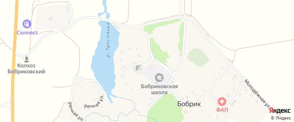 Школьная улица на карте села Бобрика с номерами домов
