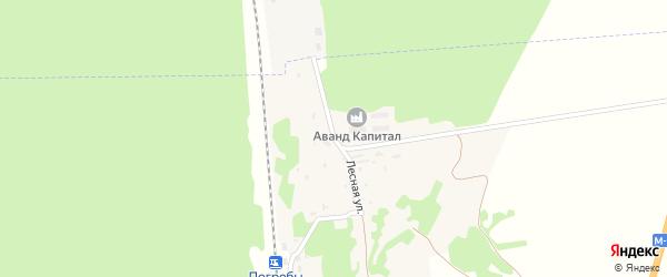Лесная улица на карте деревни Погребы с номерами домов