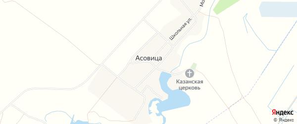 Карта села Асовицы в Брянской области с улицами и номерами домов