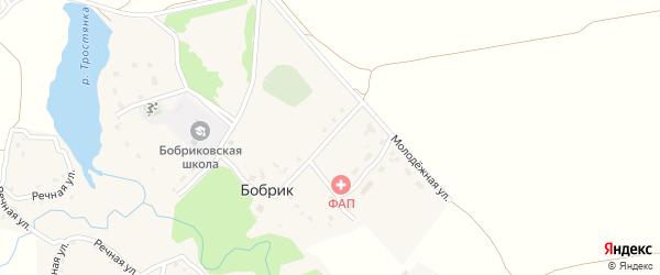 Молодежная улица на карте села Бобрика с номерами домов